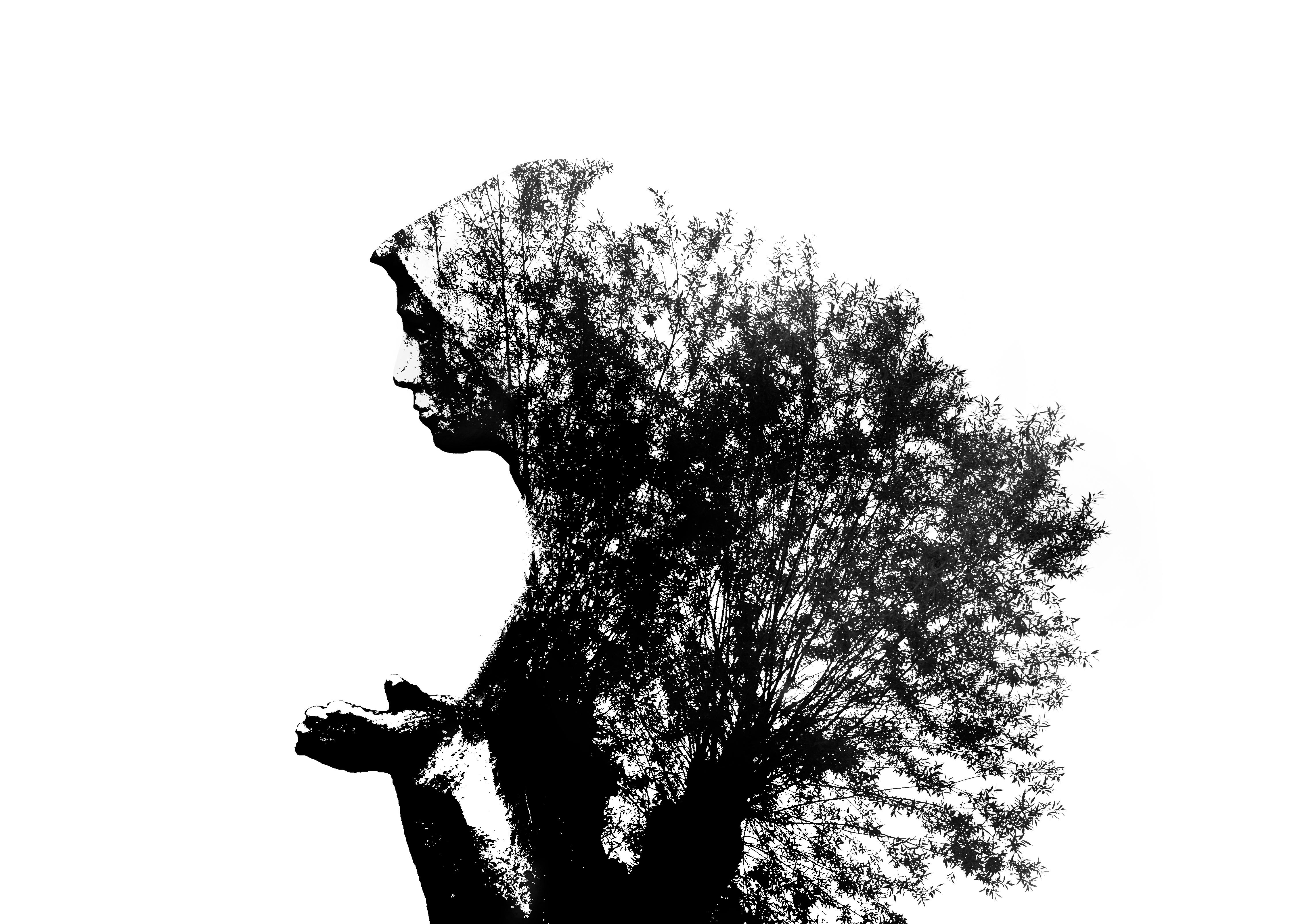 Czarno-biała grafika przedstawiająca kobietę-drzewo. Autor zdjęcia: Grzegorz Ląg Tytuł: Faustyna Zdjęcie prezentuje charakterystyczne dla Kiekrza miejsce kultu Siostry Faustyny nad Małym Jeziorem Kierskim. Zarys pomnika uzupełniają porastające drogę krzyżowa wierzby.