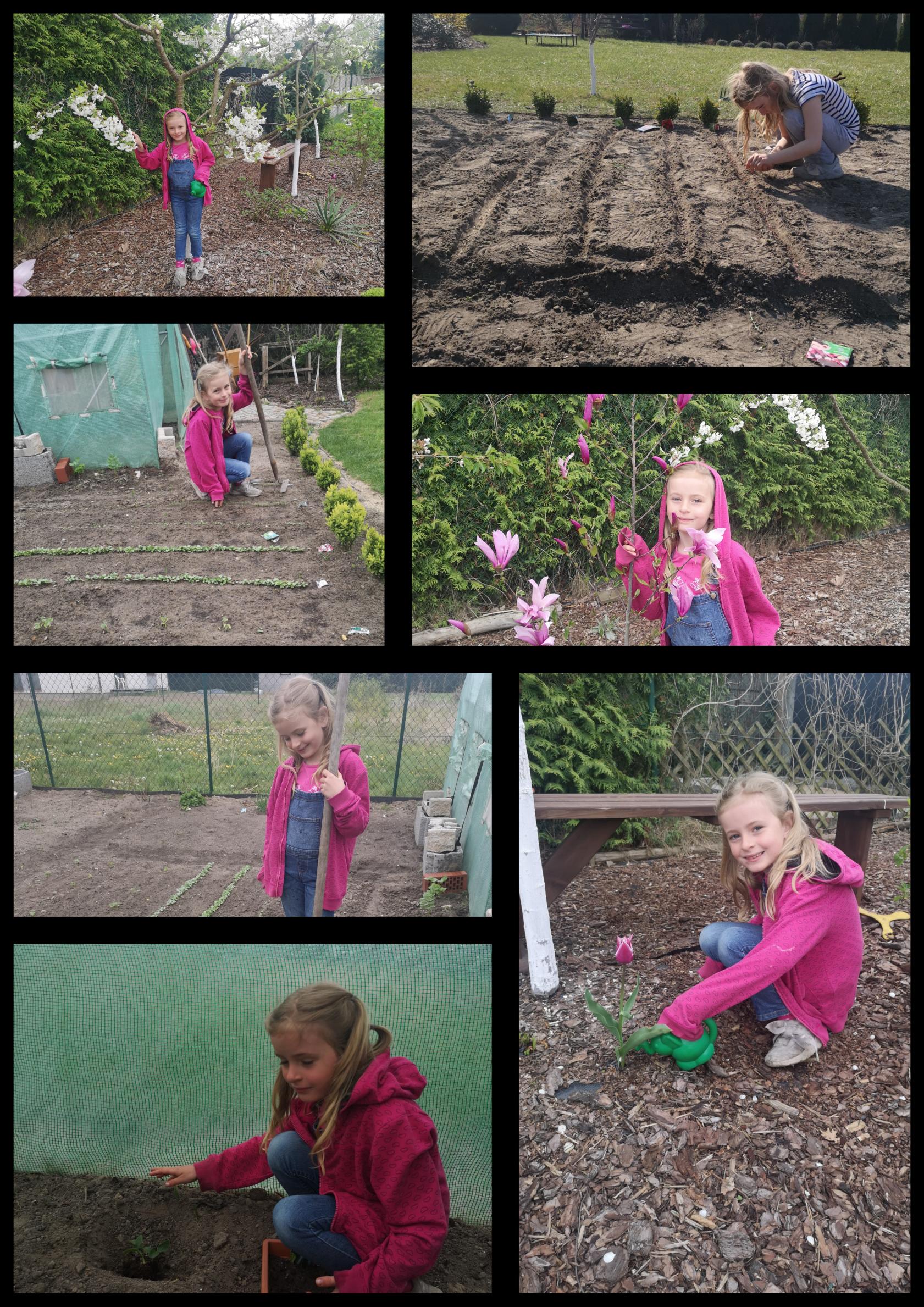 Na kolażu 7 zdjęć dziewczynki w ogrodzie. Sieje, podlewa i sadzi rośliny.