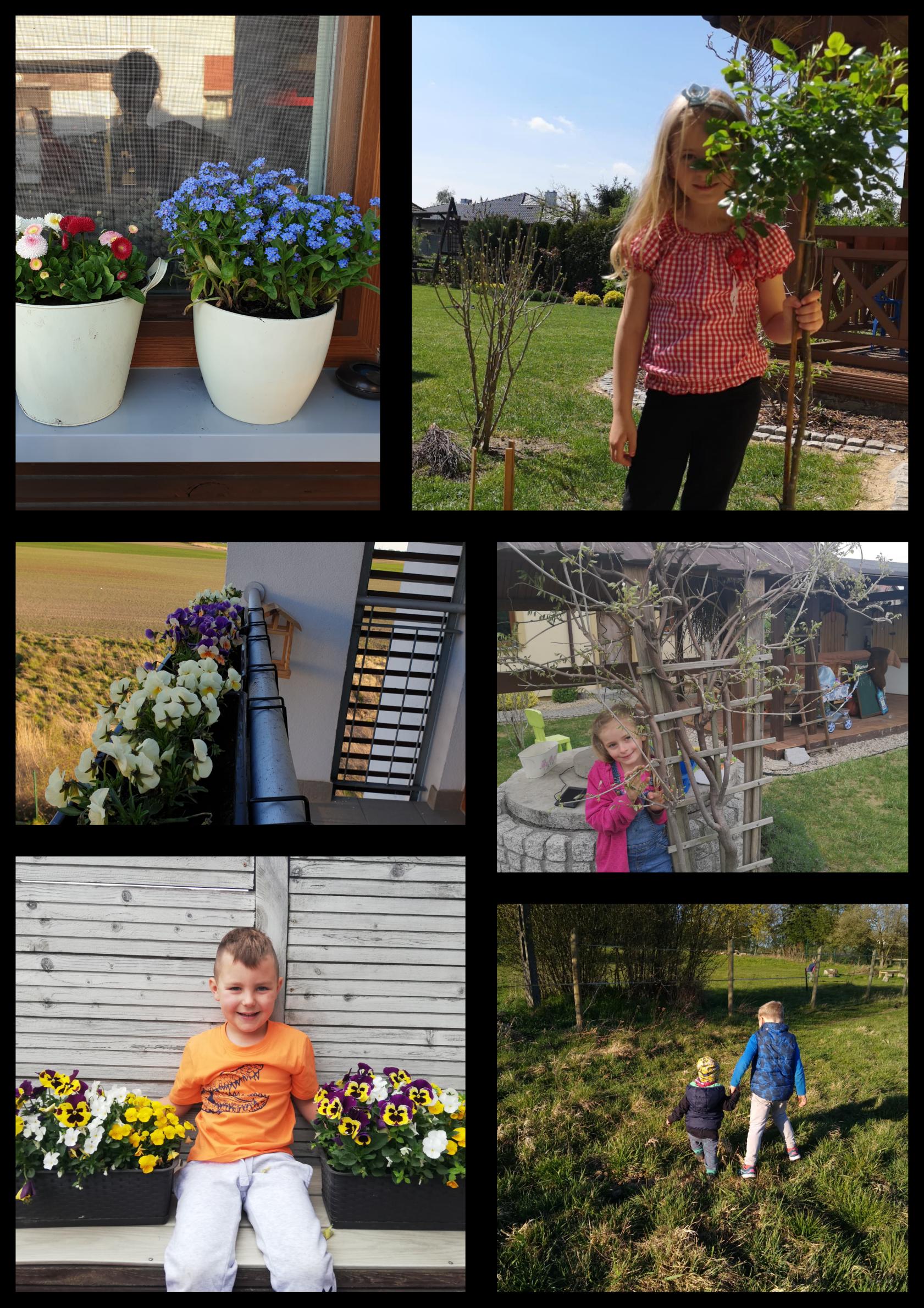 Na kolażu 6 zdjęć dziewczynek i chłopców w ogrodzie pozujących wśród kwiatów.