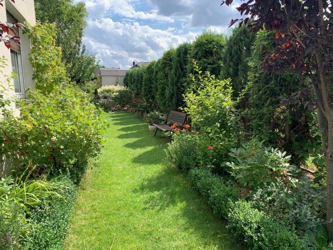 Na zdjęciu widać zagospodarowany roślinnością teren z boku domu - przystrzyżona trawa, a po bokach bogato rozmieszczone ozdobne krzewy, kwiaty i tuje. Po prawej stronie przy trawie wśród roślinności stoi ławka.