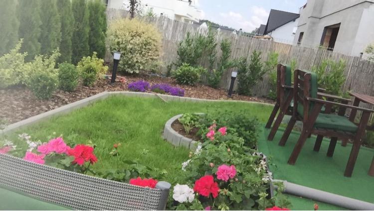 Na zdjęciu widać ogród z posadzonymi różami, ozdobnymi krzewami i trawami, po prawej stronie widać brązowe, drewniane krzesełka ogrodowe.