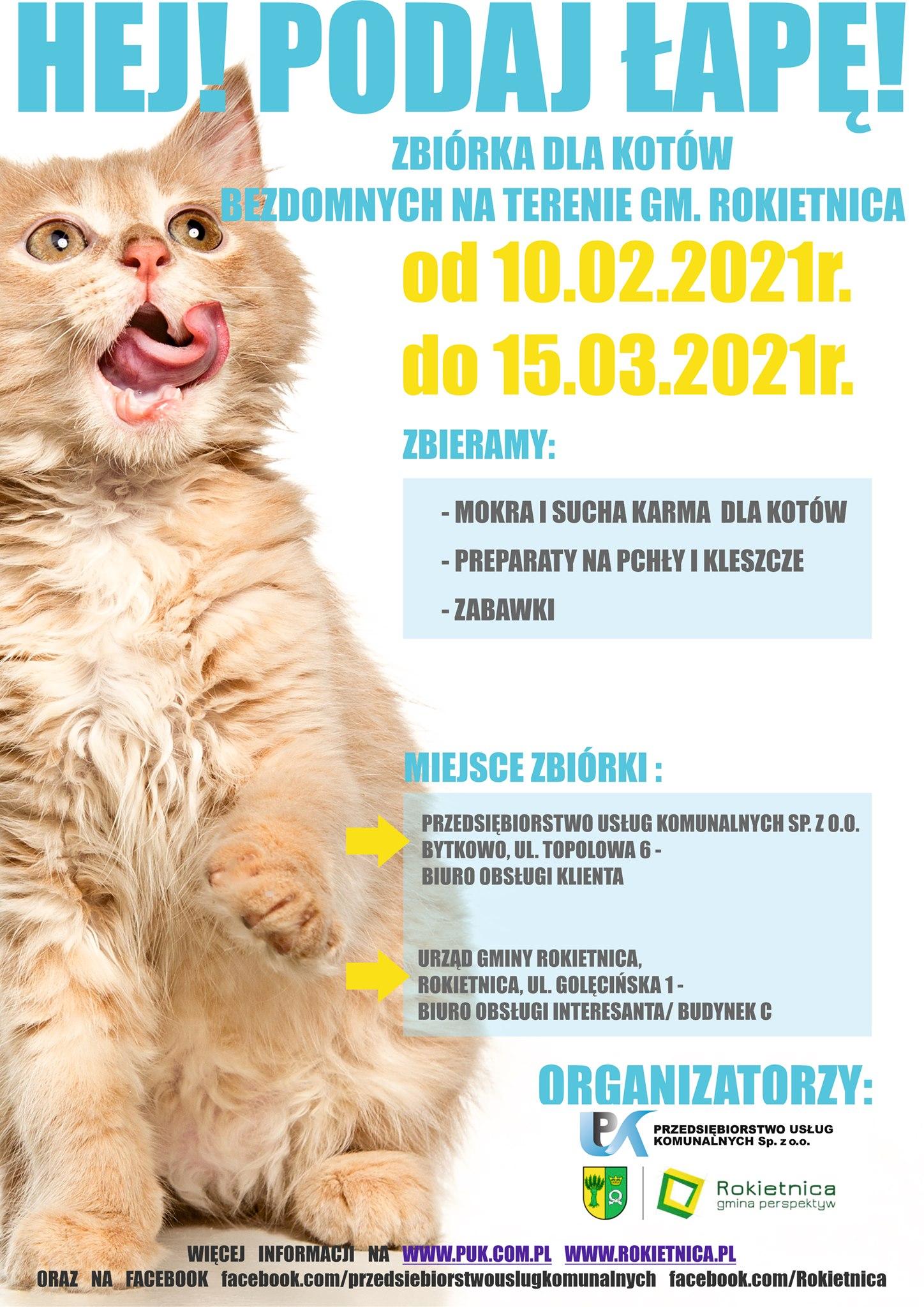 Na plakacie na białym tle zdjęcie rudego małego, oblizującego pyszczek kotka i tekst: Hej! Podaj łapę! Zbiórka dla kotów bezdomnych na terenie gm. Rokietnica od 10.02.2021 r. do 15.03.2021 r. Zbieramy: - mokra i sucha karma dla kotów - preparaty na pchły i kleszcze - zabawki poniżej szczegóły zbiórki
